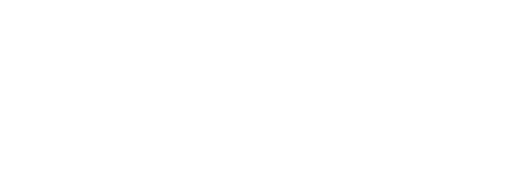 Instituto Connecta